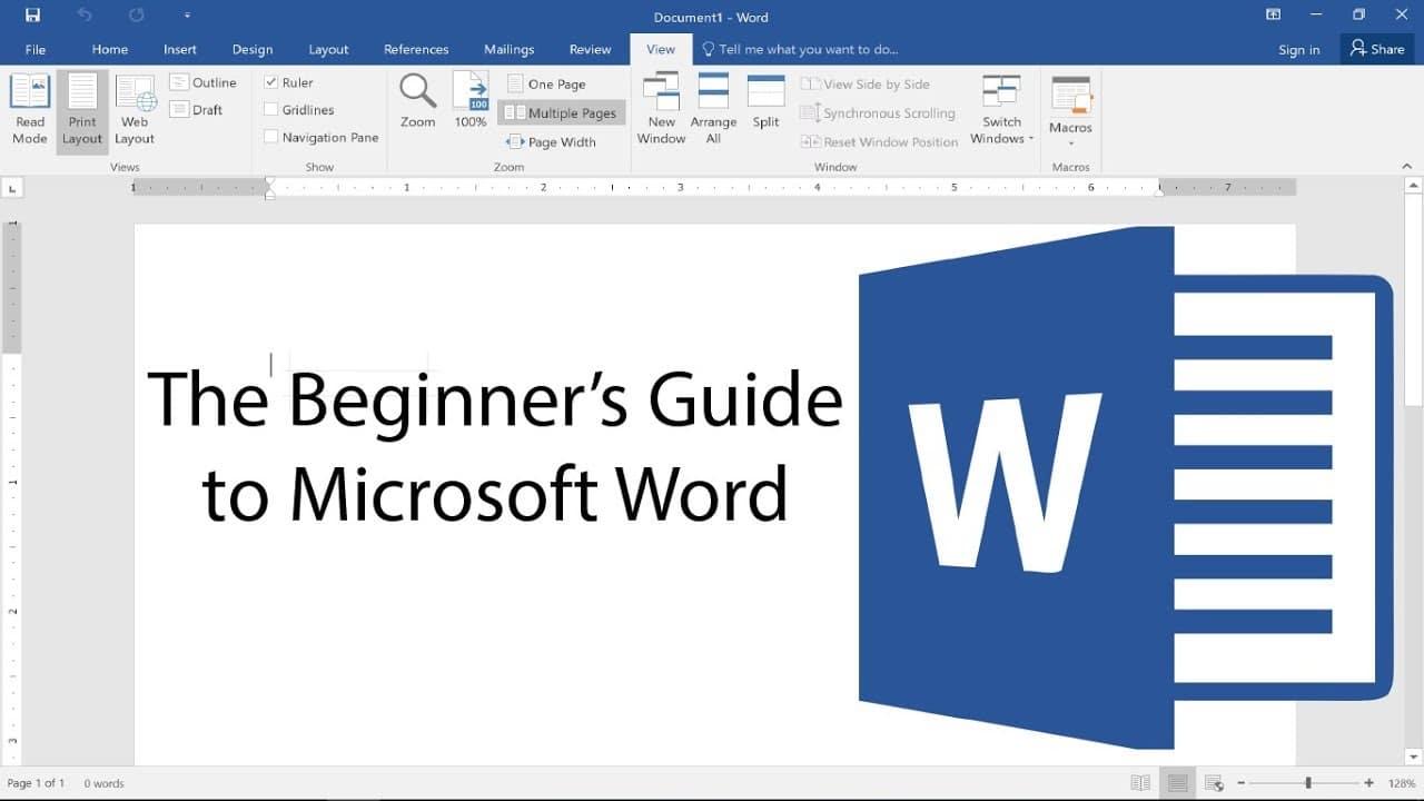 Microsoft Word 01